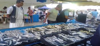 مهرجان الحوت ببني خيار موعد متجدد للمتعة والاستمتاع بالسمك الطازج